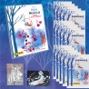 1 STARTER PACK NL+13 ZAKJES TRAD.CARDS - SPECIALE PACK NL FROZEN 2